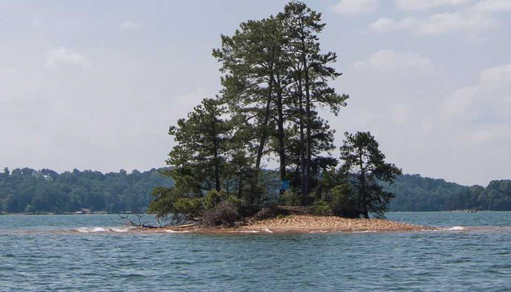 lake WEB